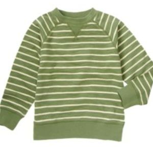 Gymboree Camp Yosemite Striped Pullover